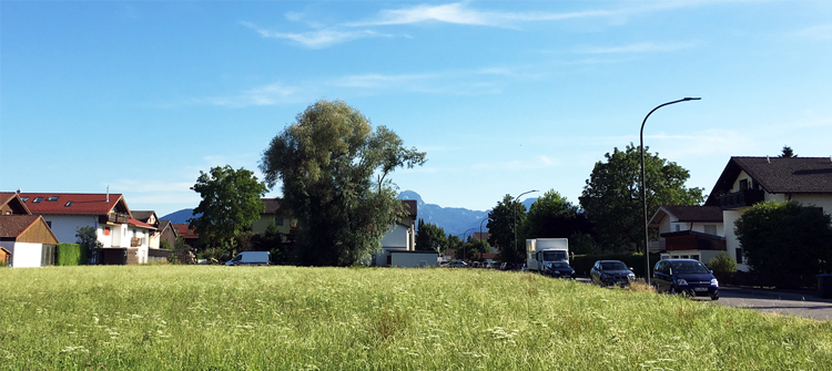 Blick vom Grundstück Richtung Wendelstein